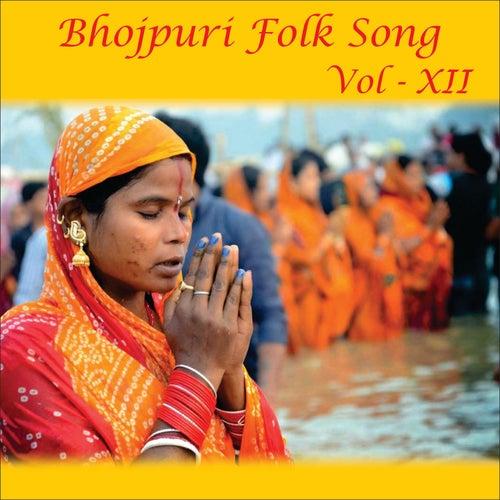 Bhojpuri Folk Song, Vol. 12 by Devi