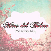 Mitos del Bolero - 25 Grandes Éxitos by Various Artists