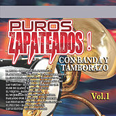 Puros Zapateados Con Banda y Tamborazo, Vol. 1 by Various Artists