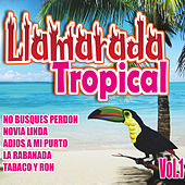 Llamarada Tropical, Vol. 1 by Various Artists