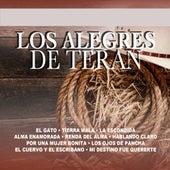 El Gato by Los Alegres de Teran