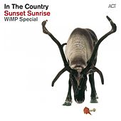 Sunset Sunrise (Wimp Special) by In The Country