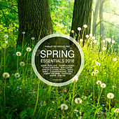 Spring Essentials 2016 - Pres. By Parquet Recordings by Various Artists