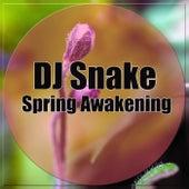 Spring Awakening by DJ Snake