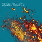 Fragmentos de um Inverno Solar by Trio Tokeshi Rosas Bazarian
