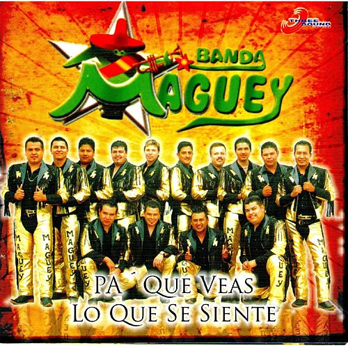 Pa Que Veas Lo Que Se Siente by Banda Maguey