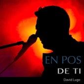 En Pos de Ti by David Lugo