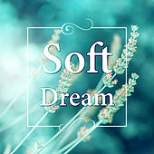 Soft Dream – Calm Music, Nature Sounds for Insomnia, Deep Sleep, Music for Baby Sleep & Relaxation, Music to Help You Sleep by Deep Sleep Meditation Oasis