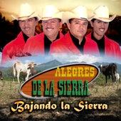 Bajando La Sierra by Los Alegres De La Sierra