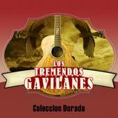 Coleccion Dorada by Los Tremendos Gavilanes