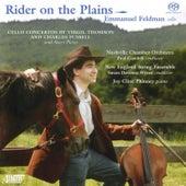 Rider on the Plains by Emmanuel Feldman