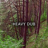 Heavy Dub by Various Artists