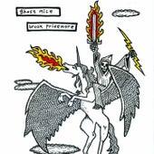 Ghost Mice & Brook Pridemore (Split EP) by Various Artists