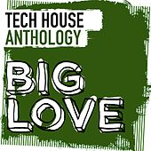 Big Love Tech House Anthology - EP by Various Artists