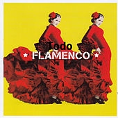 Todo Flamenco by Various Artists