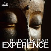 Buddha Bar Experience by Francesco Digilio