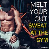 Melt Your Gut Sweat at the Gym by Various Artists