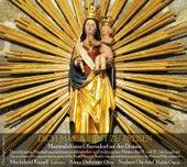 Dich Maria heut zu preisen by Various Artists