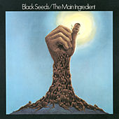 Black Seeds by The Main Ingredient