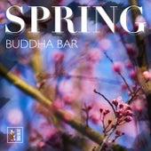 Spring Buddha Bar by Francesco Digilio