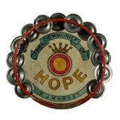 The Community of Hope by PJ Harvey