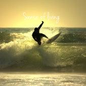 Sense of Living by Joel