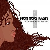 Not Too Fast! 1: Downbeat Compilation by Various Artists