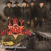 El Huerfanito by La Ley De Michoacan