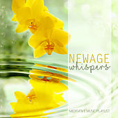 New Age Whispers: Meditative Music Playlist by Various Artists