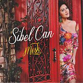 Meşk by Sibel Can