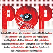 Pop 2014 by Various Artists