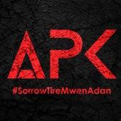 Tiré mwen adan by Sorrow