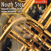North Star by Deborah Calland
