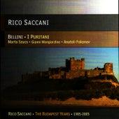 Bellini: I Puritani by Rico Saccani