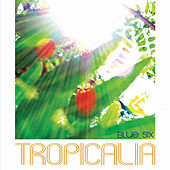 Tropicalia by Blue Six