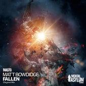 Fallen by Matt Bowdidge