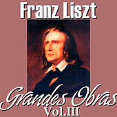 Franz Liszt Grandes Obras Vol.III by Various Artists