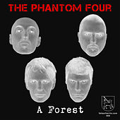 A Forest by The Phantom Four