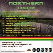Northern Light by Various Artists