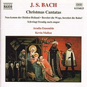 Christmas Cantatas Nos. 36, 132 and 61 by Johann Sebastian Bach