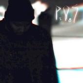 Sleepdrone/superposition (feat. Allan Kingdom, Astronautalis, Eric Mayson, Kathleen Hanna, Hard_R, Lydia Liza, Lizzo, Nicholas L. Perez) by P.O.S (hip-hop)