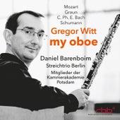 My Oboe by Gregor Witt