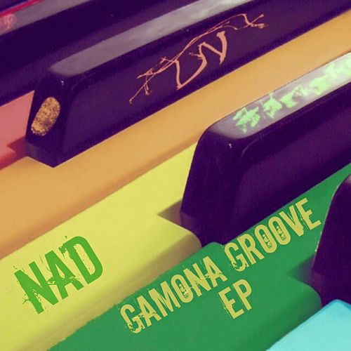 GaMoNa Groove - Single by Nad