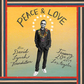 Ringo Starr : The Lifetime Of Peace & Love Tribute Concert - Benefiting The David Lynch Foundation (Live) von Various Artists