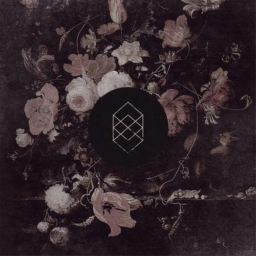 Monochrome Noise Love by Kokomo