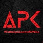 Hala APK by Sorrow