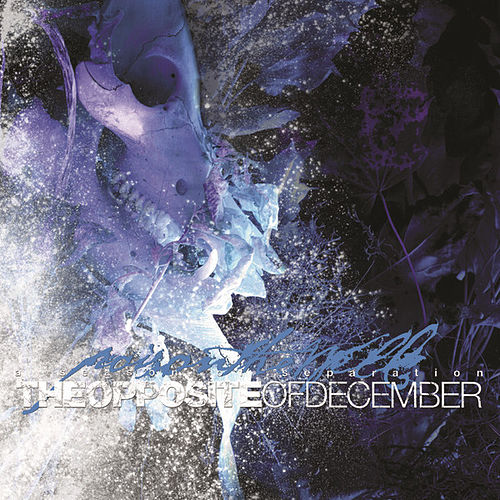 Opposite Of December by Poison The Well
