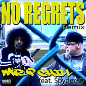 No Regrets by Mr. P Chill