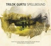Spellbound by Trilok Gurtu