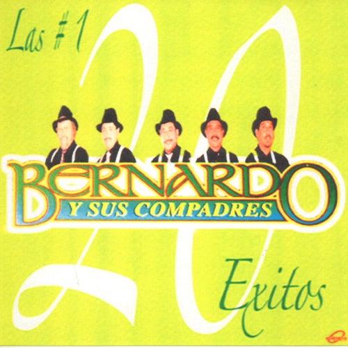 20 Exitos by Bernardo y sus Compadres